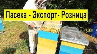 Как в розницу продать Мёд 🍯 Экспорт Мёда ✅ Состояние Пасеки 🐝