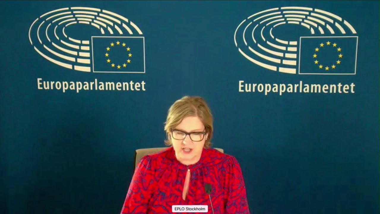 Karin Karlsbro 14 Dec 2020 plenary speech on third countries' sanctions