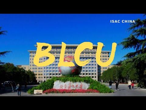 Beijing Language And Culture University | 北京语言大学 ( BLCU  World Culture Festival )