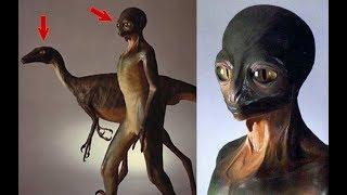 ¿Qué pasaría si los dinosaurios no se hubieran extinguido?