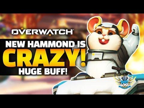 Overwatch - NEW Hammond is CRAZY GOOD! - HUGE Buff!