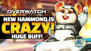 Overwatch - NEW Hammond is CRAZY GOOD! - HUGE Buff! thumbnail