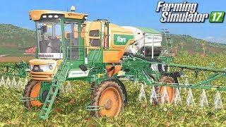 Oprysk buraków i kukurydzy  - Farming Simulator 17 [PLATINUM]   #47
