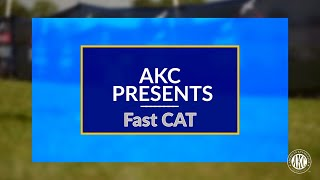 AKC Presents FastCAT