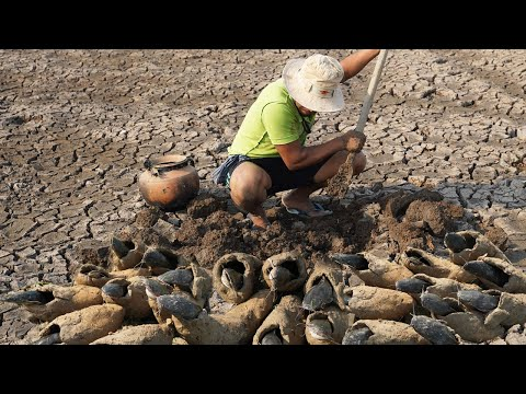 Unique Fishing Dry Season 2020 - Find & Catfish Underground In Secret Nest Fish Hole In Dry Season
