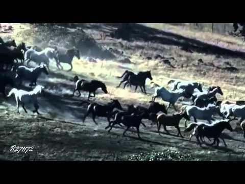 F. Liszt - Hungarian Rhapsody No2 (cond. H. von Karajan) HD720
