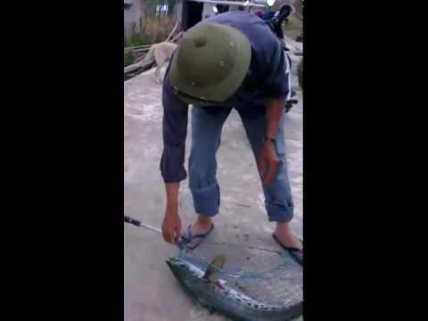 câu cá đầm Giao THủy Nam Định