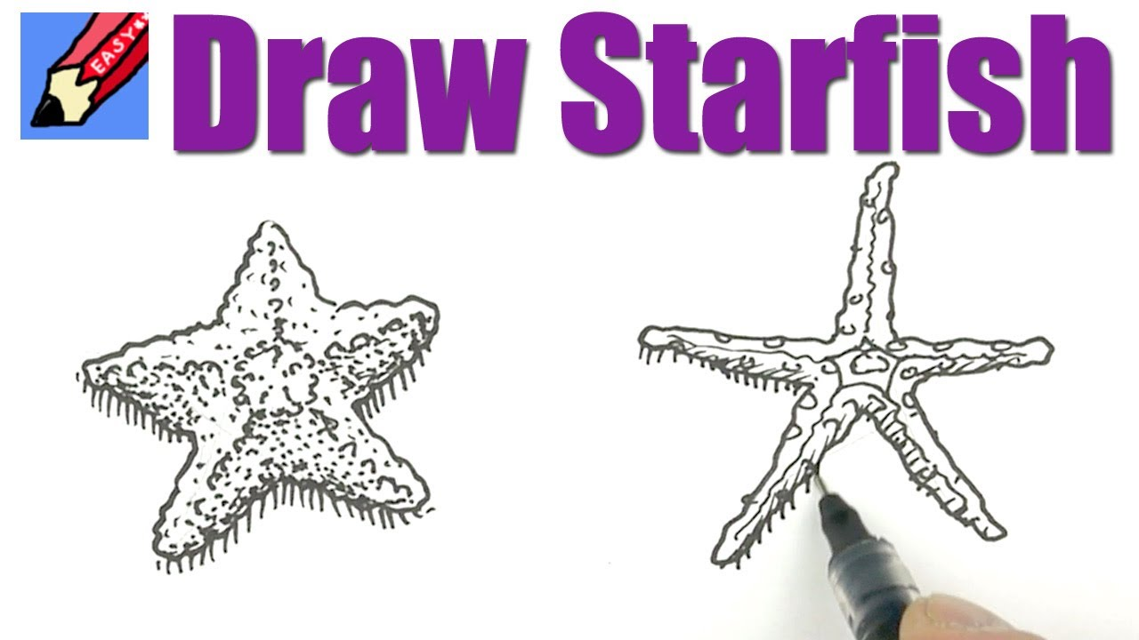 How to draw Starfish Real Easy - YouTube