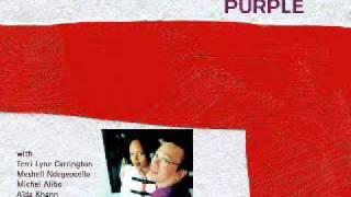 Nguyên Lê - Purple - Celebrating Jimi Hendrix