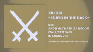 Xiu Xiu - Stupid In The Dark [OFFICIAL AUDIO]