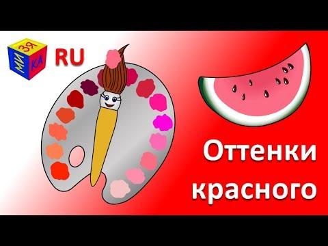 Учим цвета. Волшебная кисточка и оттенки красного и розового. Мультик-раскраска для детей