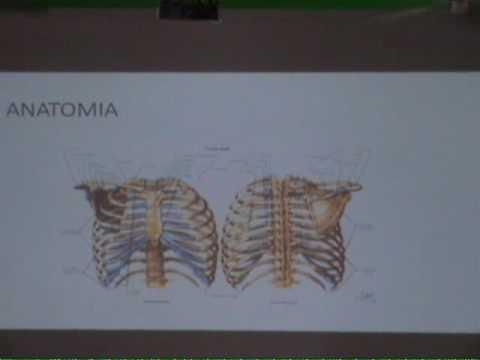 Traumatismo toracico abdominal