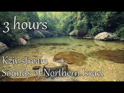 3 Hours Stream Sounds From Northern Israel   Relax   Study   Meditation   Yoga   Nature   Kziv River