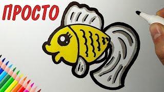 как нарисовать золотую рыбку/How to draw a goldfish