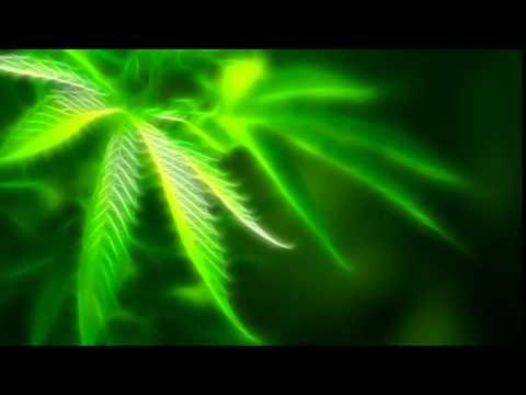 FREE LOOPS - IV/XX - Purple Haze (Hip-Hop Loops)
