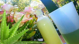 Condicionador de Aloe Vera Original – Nunca Mais Precisei Comprar