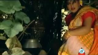ময়না নামের মেয়েটি by নাছির খান