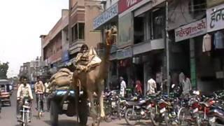 07.09.10 ruhiger Stadtverkehr in Indien
