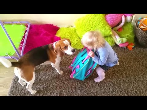 Dog and baby can't agree what to pack