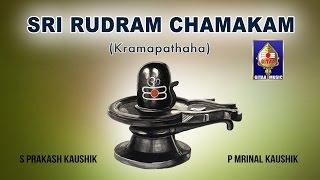 Purusha Suktham | S Prakash Kaushik & P Mrinal Kaushik
