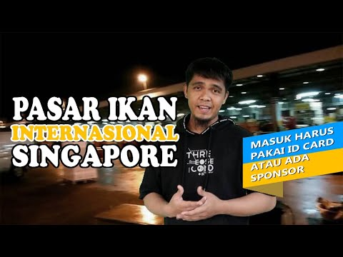 PASAR IKAN HIGIENIS DI SINGAPORE   JURONG FISHERY PORT AND INTERNATIONAL  FISH MARKET