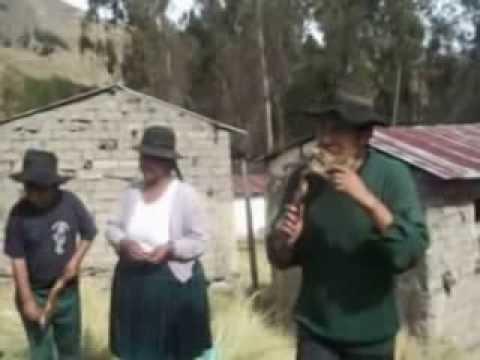 PELICULA BOLIVIANA 2