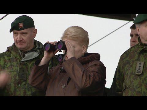 """Dalia Grybauskaitė stebėjo NATO pratybas """"Geležinis kardas 2015"""""""