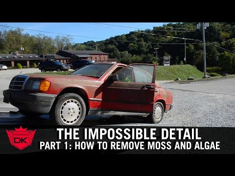 The Impossible Detail Part 1 How To Remove Moss and Algae