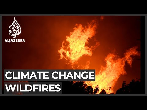 US: Experts warn catastrophic wildfires could be new normal