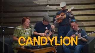 Candylion