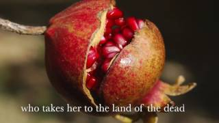 Book trailer for Chrysomelia Stories series (Persephone's Orchard, Underworld's Daughter, Immortal's Spring)
