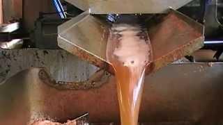 pressage artisanal des pommes à cidre