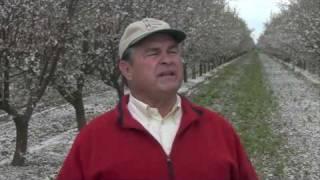 Meet The Men Who Grow Your Almonds Part 1