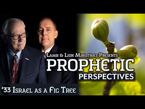 Israel As A Fig Tree | Prophetic Perspectives #33