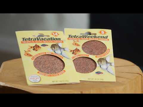 Tetra® – Leaving Your Fish Home Alone