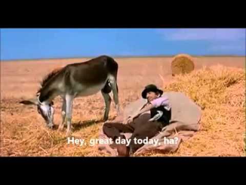 Very funny Donkey Balls Time