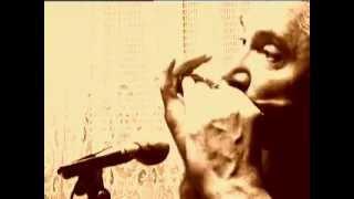 Feelings, Morris Albert- Harmonica