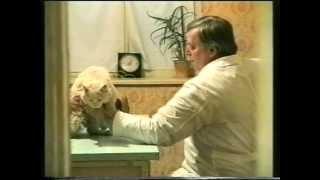 Тёма трахнул Ксюшу. Кто родится, котопёс? 1996.