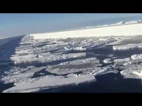 Wilkins ice shelf break up British Antarctic Survey