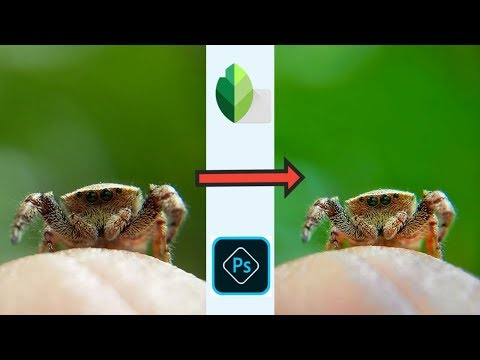 Macro Photography: Best Macro Photo Editing Tutorial On Android