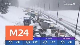 Смотреть видео Москвичи предлагали расчищать дороги за 5 тысячей рублей во время снегопада - Москва 24 онлайн