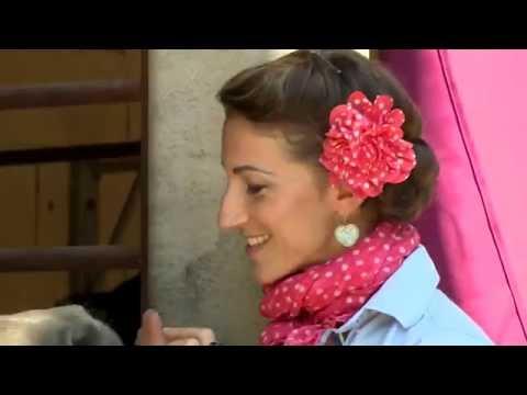 Bild: ReiterTV - Pferde + Reitausbildung + Horsemanship