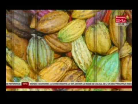 Business 24 / Agri Agro - Polyagrobiz et ses opportunités