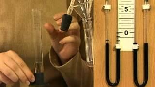 Влияние температуры на скорость химических реакций