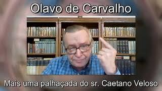 PARASITAS DE VERBA ESTATAL TEMEM BOLSONARO - OLAVO DE CARVALHO