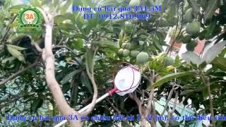 Video Kéo hái trái cây, kéo cắt trái cây, tỉa cành trên cao download MP3, 3GP, MP4, WEBM, AVI, FLV November 2018