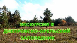 Экскурсия в Днепровско-Орельский заповедник