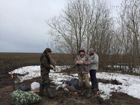 Охота 2019, весна, Тульская область,  (18+)