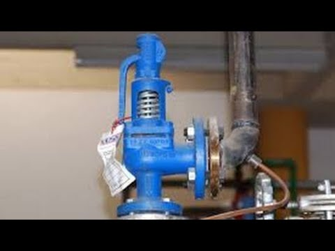 what-is|safety-valve|law|theory|definition|-?