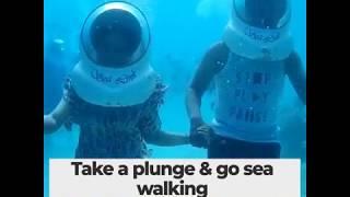 Andaman & Nicobar Island | Blue Beaches | Exotic Holiday